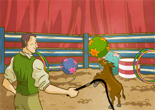 The Adventures of Pinocchio 14: Circus Work