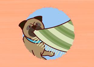 Word Families 18: Pug Can Tug