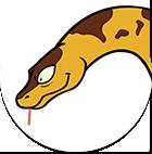 Kaa 영리하고 거대한 비단뱀