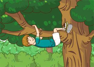 I Like to Climb