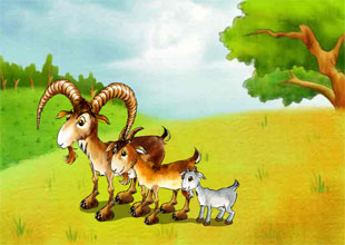 The Three Brother Goats Gruff