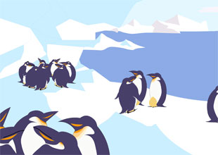 The Emperor Penguins' Winter