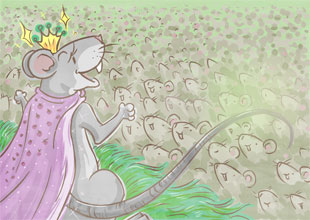 6. Queen of the Field Mice