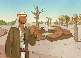 My Life as a Bedouin
