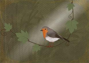 The Secret Garden 9: The Robin Shows the Way