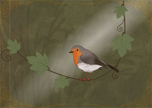 9. The Robin Shows the Way