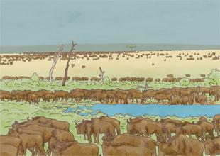 Our World Landmarks 16: The Serengeti