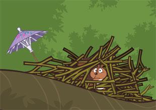 Bird and Kip 20: Kip's Nest