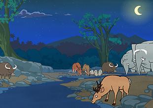 The Jungle Book 5: A Water Truce