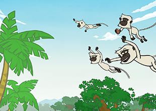The Jungle Book 6: The Flight of the Monkeys